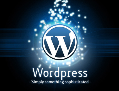 wordpress-biyousitu